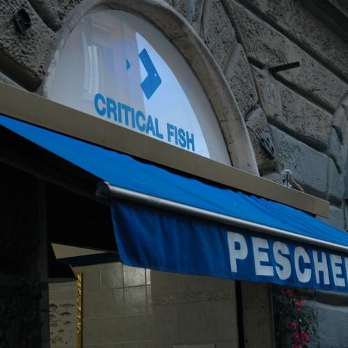 Critical Fish, anche la cozza è etica