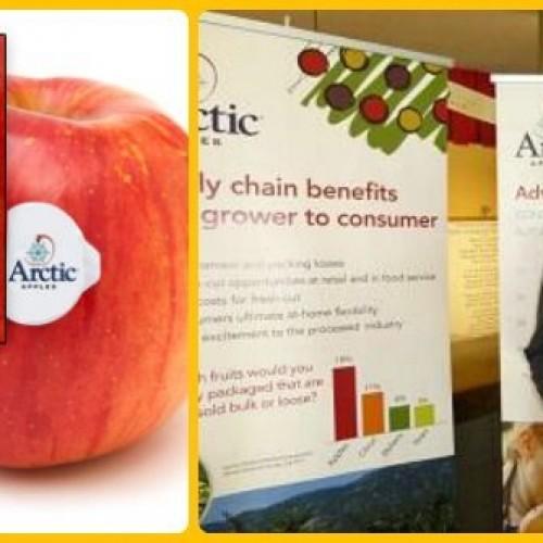 Ogm, in America la prima mela geneticamente modificata