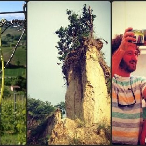 Roero Arneis e Roero Docg, i vini delle Langhe prodotti da tre giovani intraprendenti
