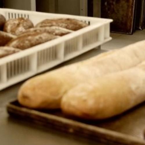 Buoni dentro a Milano, il pane dei ragazzi del Beccaria ora venduto anche in negozio
