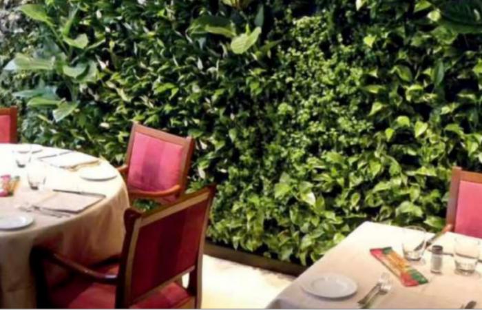 sala verde buff roma