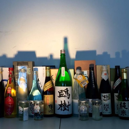 Kampai Sake festival al via da questa sera a Roma. E poi Slow Food in Ara Pacis e ravioli e surf da Mariolina