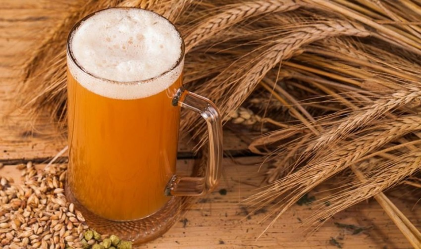 culinaria birra