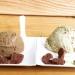 Crudo e mangiato Roma, il gelato crudista senza cono e coppette