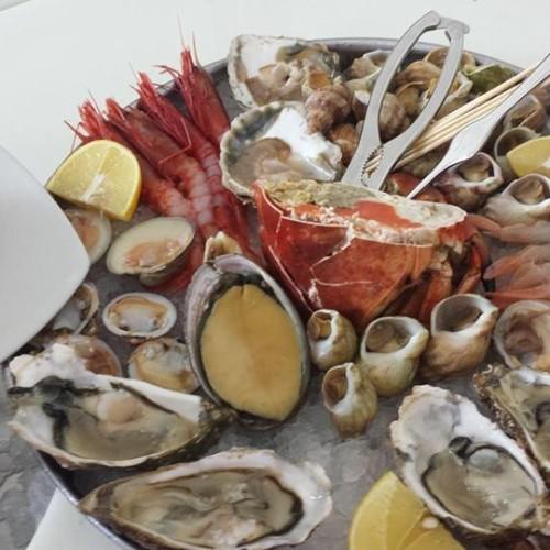 Vivo Firenze, il pesce fresco dell'Argentario approda al mercato di Sant'Ambrogio
