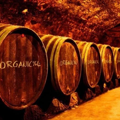 Montesacro, vini naturali Organicool