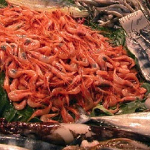 Pesce in Sardegna, tappa ad Alghero