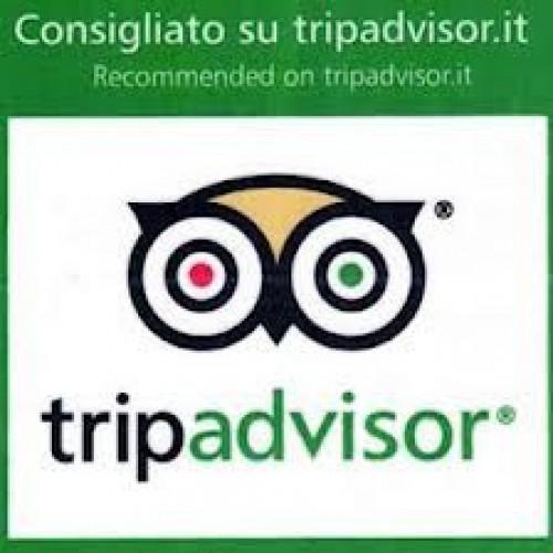 Chi non è consigliato su Tripadvisor?