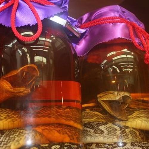 La tentazione del serpente nel cocktail