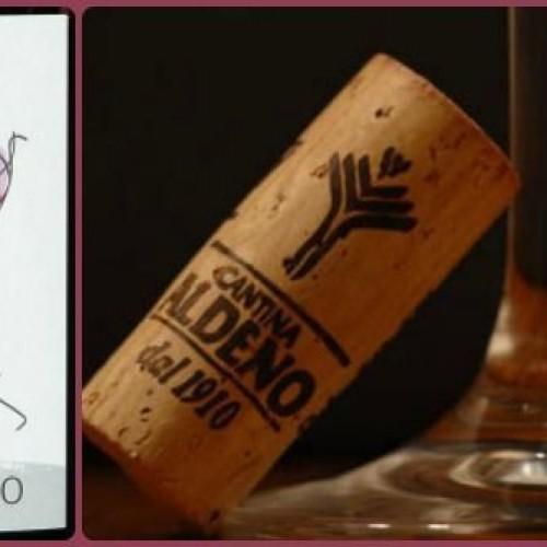 Trentino, nasce il primo vino 100% bio-vegan