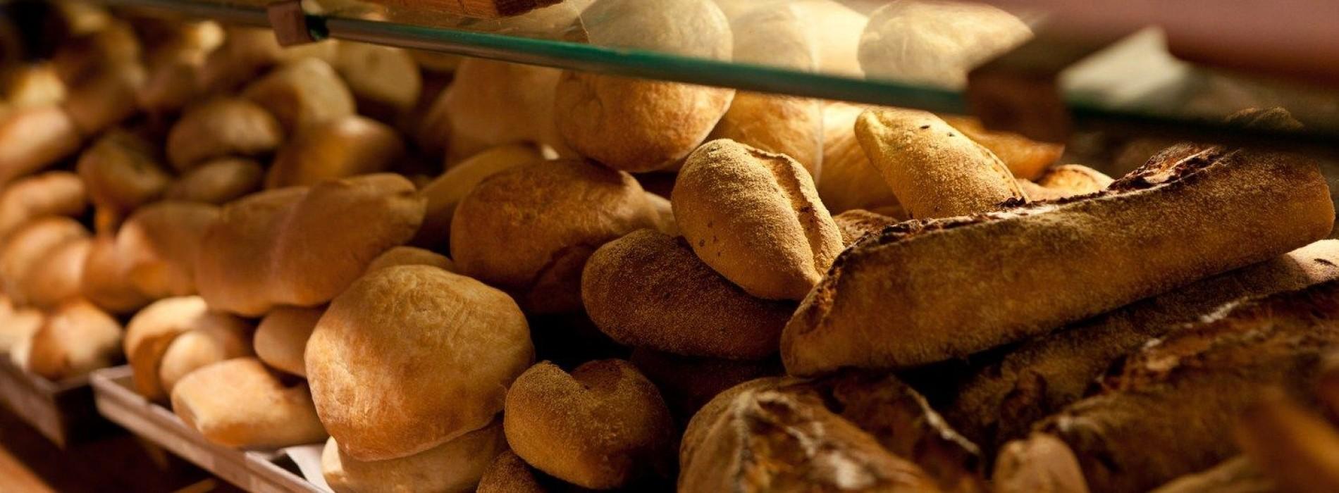 I migliori forni di Roma: tutti i panifici dove il pane e la pizza sono a regola d'arte (non solo Bonci e Roscioli)
