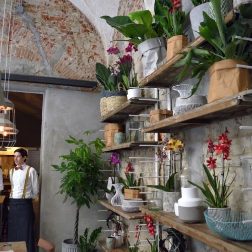 Nuove aperture a Firenze: torna la Ménagère in versione concept restaurant, Venchi raddoppia