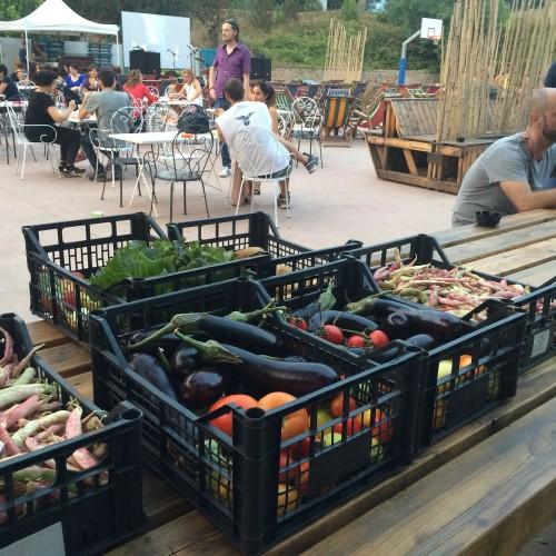 Flash Market a Roma, la spesa sostenibile via internet che si ritira all'aperitivo (da Monk, Trabant bar e altri locali)