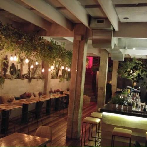 Coffee Pot Trastevere Roma, un nuovo giardino da sushi y mezcal