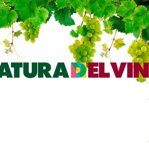 """Eventi a Milano novembre 2015: da oggi """"Natura del vino"""" alla Cascina Cuccagna"""