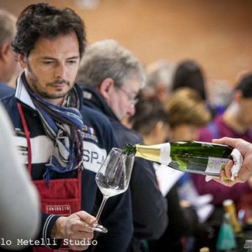 Viniveri 2016 a Cerea, cinque vini da provare
