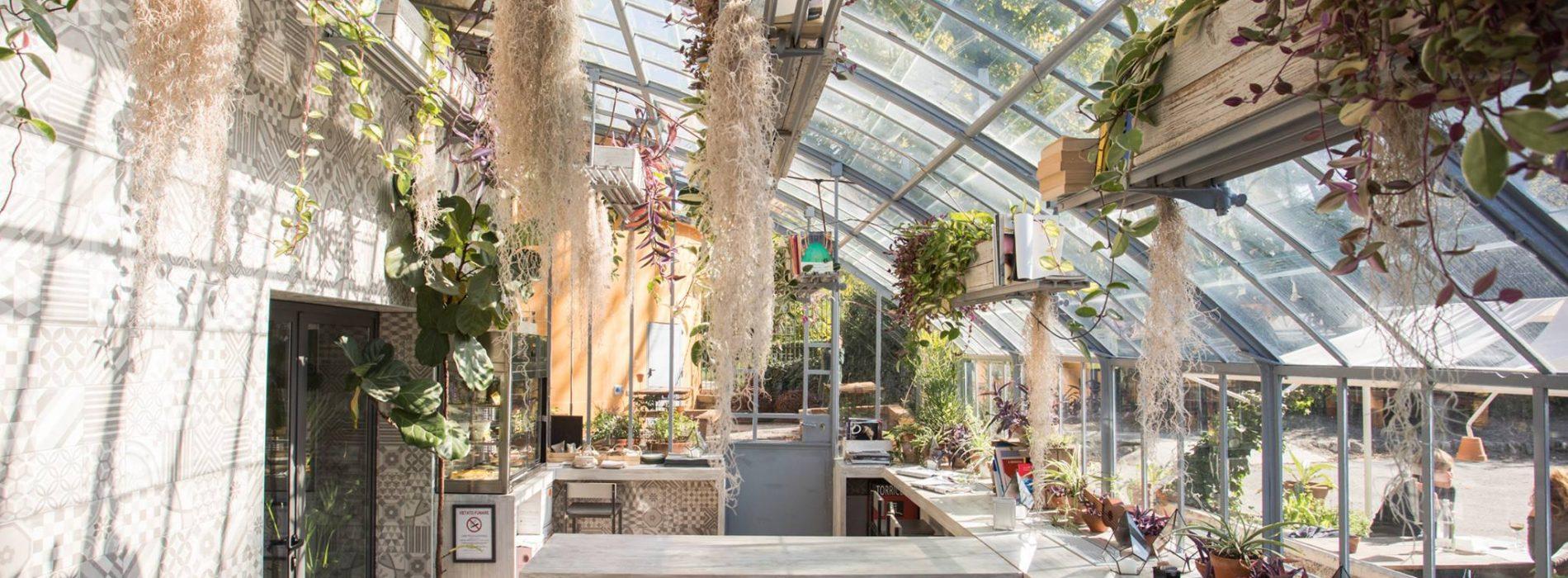 Vetro bologna serre giardini margherita puntarella rossa - I giardini di marzo ristorante roma ...