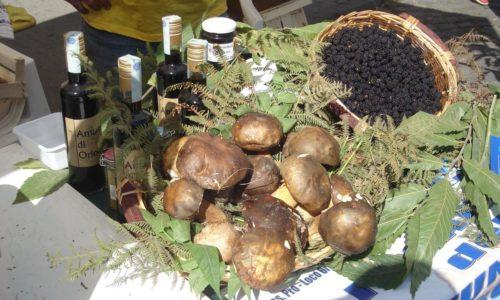 Sagre Lazio settembre 2017: dalla festa dell'uva a Colonna ai funghi porcini di Oriolo Romano