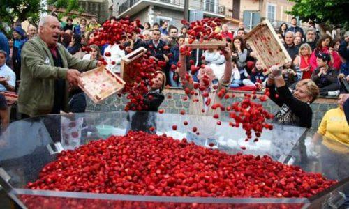 Sagre Lazio giugno 2018: dalla porchetta di Vallerano alle fragole di Nemi (e Birra del Borgo Day)