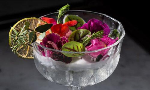 I migliori cocktail di Genova, sei locali da provare