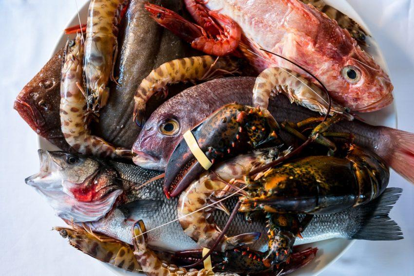 pesce santucci a roma
