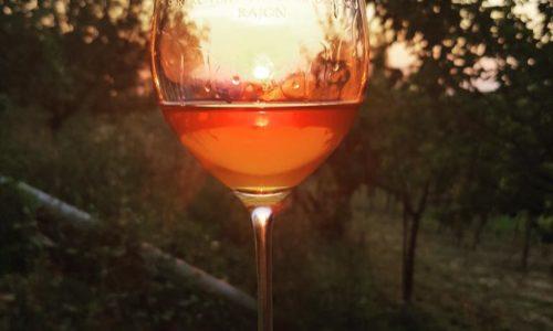 Cosa sono i vini macerati sulle bucce (orange wine o arancioni)