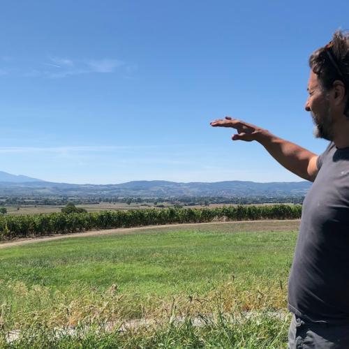 """Stefano Amerighi, l'autodistribuzione e la biodinamica: """"Il vino naturale è superato, andiamo avanti"""""""