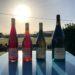 Vin méthode Nature, in Francia arriva l'etichetta per i vini naturali (ma è solo l'inizio)