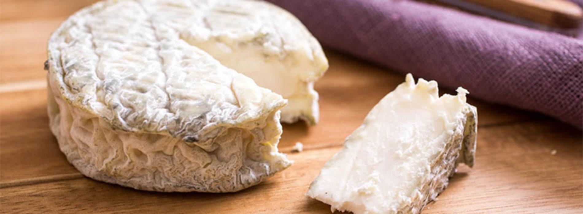 Robiola di Roccaverano e Strachitunt in crisi, dai produttori l'appello a salvare i formaggi dop
