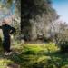 Fauno Azienda Agricola: storia di tre ragazzi che si trasferiscono da Ostia ai Monti Aurunci per coltivare un bosco