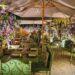 Pizzerie all'aperto a Roma: dove mangiare pizza e fritti tra dehors, spazi esterni e giardini