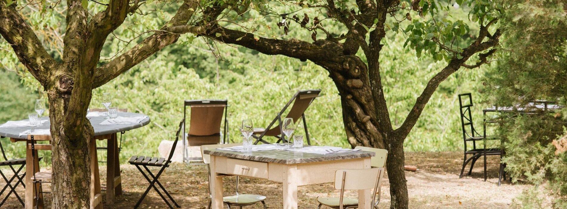Sotto i Sassi, mangiare immersi nella natura tra castagni e frutteti in un Parco Regionale nell'Appennino emiliano